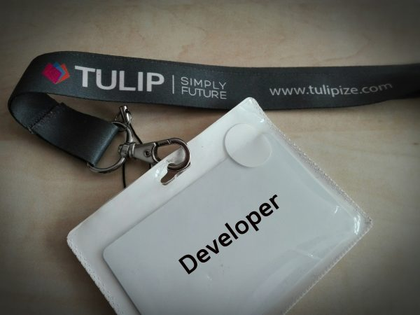 TULIP_tim_pozicia_developer